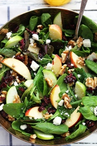 apple-cranberry-walnut-salad-1